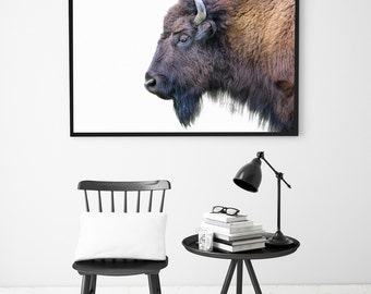 Bison Animal Print, Modern Decor, Nursery Print, Animal Wall Art, Bison Print, Nursery Printable Art