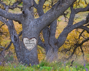 Carved Heart on Tree, Personalized Wedding Gift, Oak Tree, Romantic Anniversary Gift, Customized Names Photo pp131