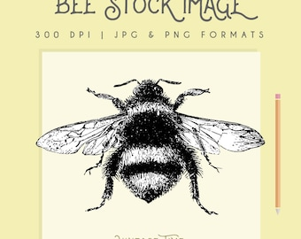 Vintage Bumble Bee Black and White image Instant Download Digital printable picture clipart graphic transfer high resolution