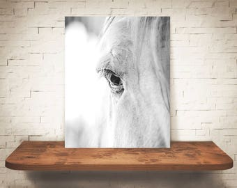 Horse Photograph - Fine Art Print - Black & White Photo - Wall Art - Farmhouse Decor - Wall Decor - Equine Photography - Pictures of Horses