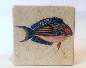 Minilitos fish prints on par rock weddings