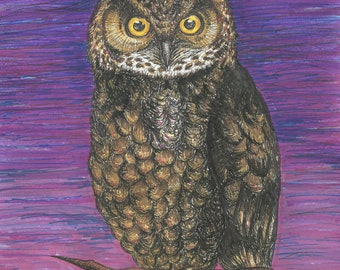 Night Owl Illustration Art Poster
