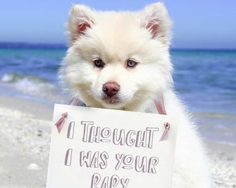I Thought I Was Your Baby Sign | Funny Dog Pregnancy Announcement Sign For New Baby Maternity Photo Shoot 1625 BB