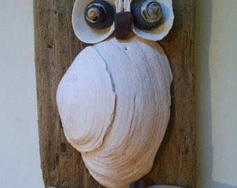 Snowy Sea Shell Owl, Sea Glass, Driftwood, Natural, Unique