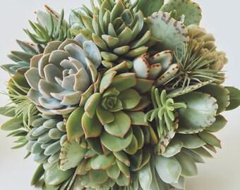 Succulent & Air Plant Bouquet // Bridal Bouquet