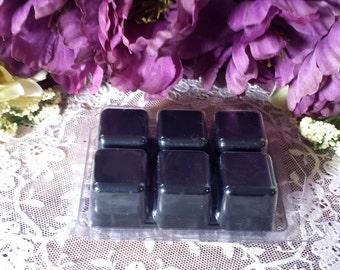 Blackberry Sage Protection Tarts, Soy Tarts, Soy Wax, Wax melts, Spell Melts