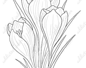 Digital stamp - Crocus, spring flowers