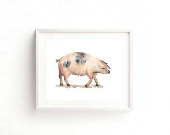 Framed Pig Watercolour Print