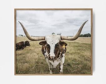steer print, western print, western art, western printable, southwest print, southwest art, southwest decor, western decor, western print