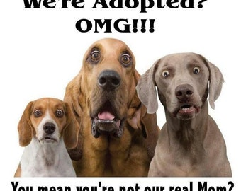 """Magnet, """"We're adopted?  OMG!  You mean you're not our real mom?"""""""