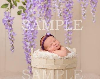 Digital newborn flower prop