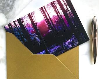 Woodland Walks : Greeting Card , Photographic Print