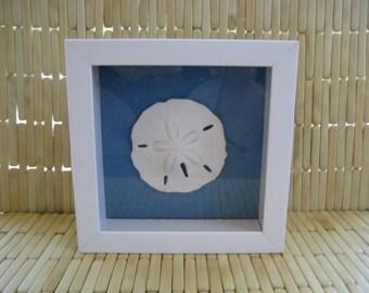 """Sand Dollar & Starfish Wall Art Home Decor 6""""X 6"""" White Shadow Box Frame Ocean Nautical Coastal Beach Home House Warming Gift"""