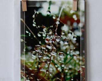 Postcard waterdrop