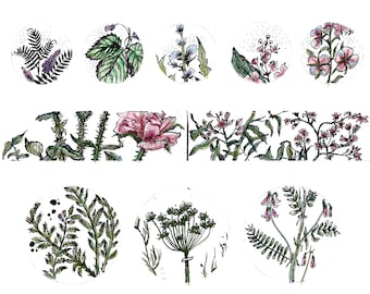 Artistic one of a kind botanical floral sticker sheet. Coloured and black and white versions