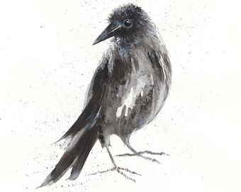 Crow - Sketch - Giclée Print
