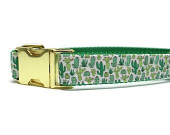 Canvas Dog Collar | Metal Buckle Dog Collar | Cactus Dog Collar | Girl Dog Collar | Boy Dog Collar | Summer Dog Collar | Green Dog Collar