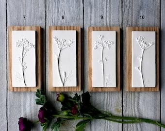 Cow Parsley Miniature Plaster Cast Tiles, Mounted On Wood, botanical art, flower tile, nature art,