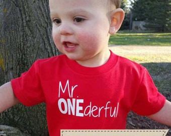 Mr ONEderful!  - 1st Birthday shirt - Front and Back design - Name on back - first birthday - one year old - Mr Wonderful - onederful
