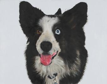 Custom pet portrait in oils