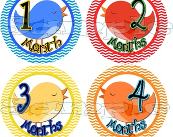 First Year Monthly Stickers Baby Shower gift 1- 12 Months Infant Month Stickers Onepiece Milestone stickers Baby Boy Birds Stripes