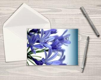 Purple Petals Macro Note Cards (Set of 8)