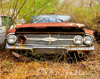 1960 Chevy BelAir with in the woods Photograph