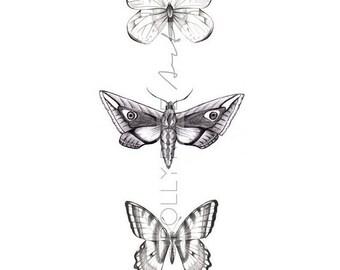 Wings trio