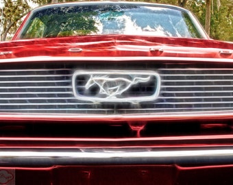 Ford Mustang Red Classic - Fine Art Photograph Print Picture