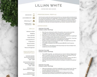 Professional Resume, Modern Resume, Professional Resume Template Word / CV  Professional, CV Modern