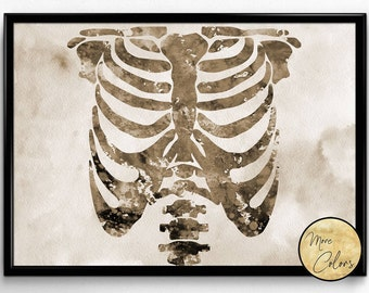 Human Chest skeleton, Anatomy, anatomy human body, Poster, Room Decor, gift, print, wall art,medical art (630)