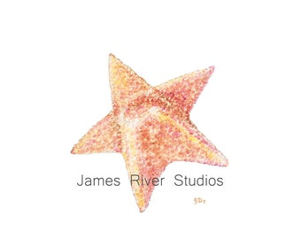 Starfish Art Starfish Painting Starfish Print From Original Starfish Watercolor Painting. Starfish Beach Art Beach Decor Ocean Decor Print.