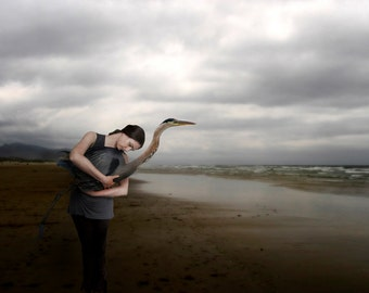 Theory of Flight  -  8 x 10 Limited Edition -  Woman and Blue Heron - Figurative - Stormy Ocean Landscape - Fine Art Print by My Antarctica