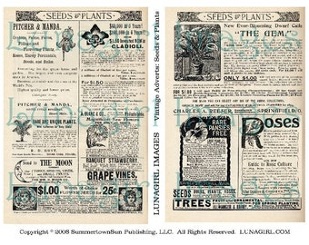 Vintage Ads SEEDS PLANTS digital collage sheet, Victorian advertising, flowers gardening antique newspapers text backgrounds images DOWNLOAD