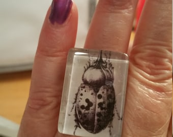 Creepy Egyptian Scarab Halloween Witch Cat or Big RAT  Adjustable  Ring