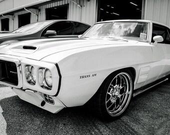 1969 Pontiac Firebird Trans Am Car Photography, Automotive, Auto Dealer, Muscle, Sports Car, Mechanic, Boys Room, Garage, Dealership Art