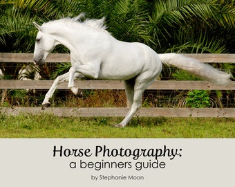 Horse Photography ebook, Basic Photography Guide, Beginners Guide to Horse Photography, Take Better Pictures of Horses