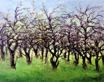 Garden Trees - Oil Painting-Original Art