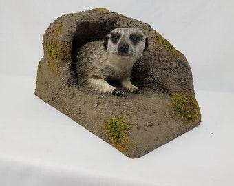 Taxidermy Meerkat