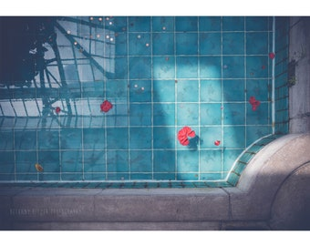 Abstract Photography Camellia Flowers Photography Teal Wall Art Architecture Photography Swimming Pool Greenhouse Floral Decor Modern Art