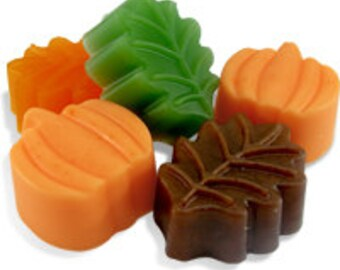 Pumpkin and Leaf Soap Bar Set