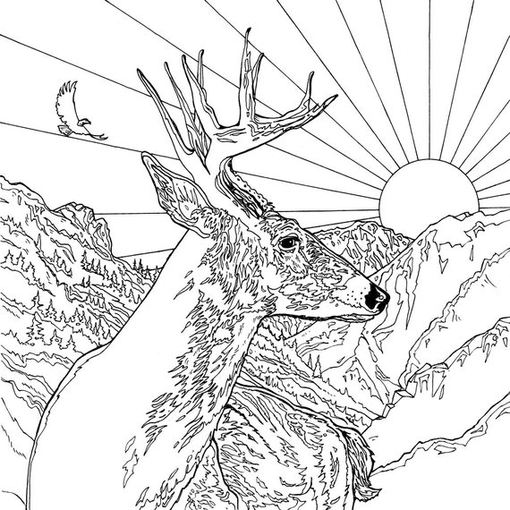Legendary Landscapes Coloring Book Journey