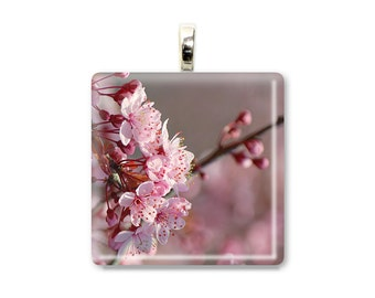 Cherry Blossoms Profile - Glass Tile Photo Pendant - Original Photography