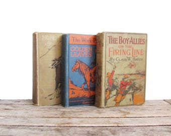 Vintage Wild West Book Set - Cowboys and Native Americans - Decorative Bindings - 20th Century Novels