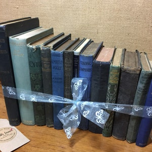 BLUE Vintage Book Collection - Old Books Decoration - Foot Long 11-13 Books - Shelf Staging - BLUE Home Decor - Custom Sourced Books