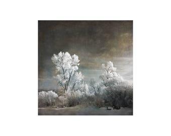 Surreal Winter Scene, Winter Wonderland, Snow Scene, Hoarfrost Magic, Ski Cabin Decor, Snow Photography