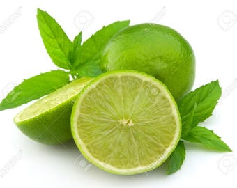 Mentha aquatica v. citrata Lime Mint or Watermint FREE SHIP