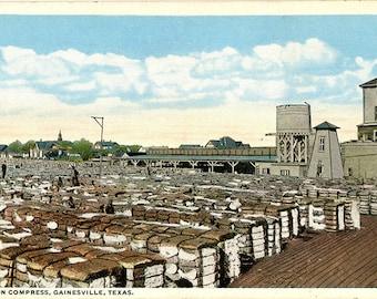 Gainesville Texas Cotton Compress Vintage Postcard circa 1920s (unused)