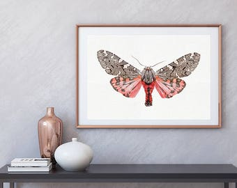 Nature Photography - (Print # 302) Lucky Moth-    Fine Art Print - Two Paper Choices-  Bohemian Home Decor - Print