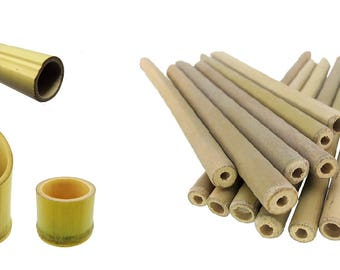Bamboo Wood Tube Kit Reptile Lizard Terrarium Vivarium Stick
